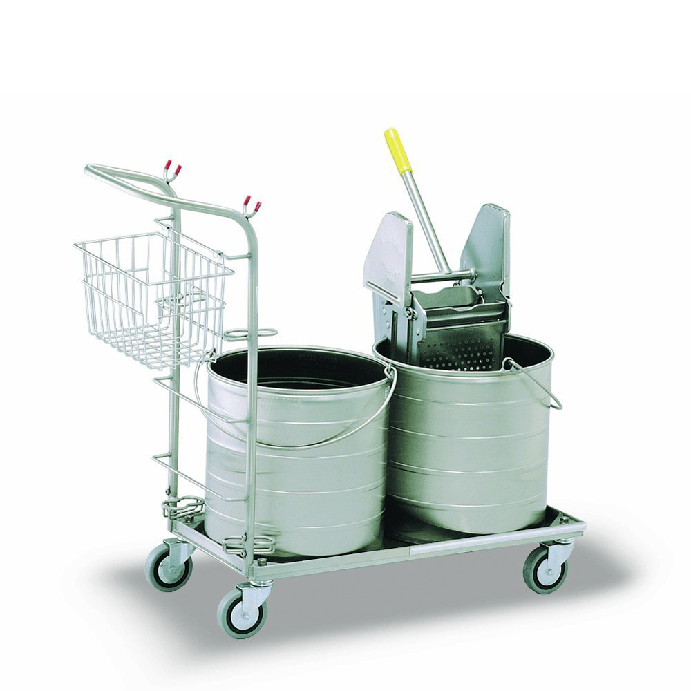 Carrier with mopping double buckets